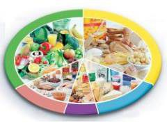 Питание и здоровье человека